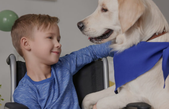 Supreme Court Rules for Child's Right to Use Service Dog